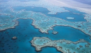 Sprachreisen Cairns_Great Barrier Reef